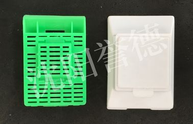 China Large Size Tissue Processing Cassettes , Green Pathology Cassette Design Reasonable factory